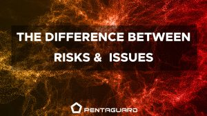 difference between risks and issues